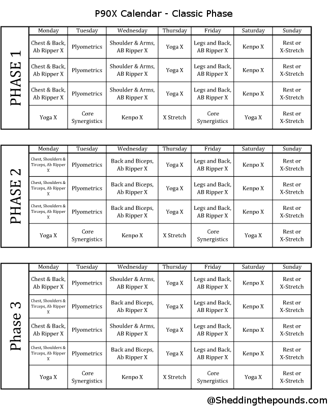 insanity workout documents