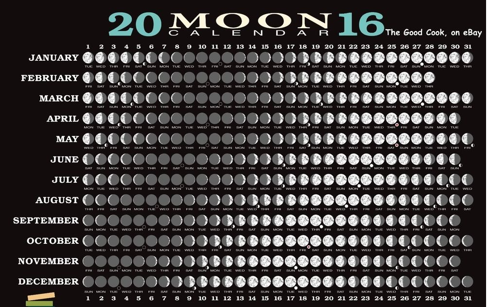 Moon Phases 2016 Calendar