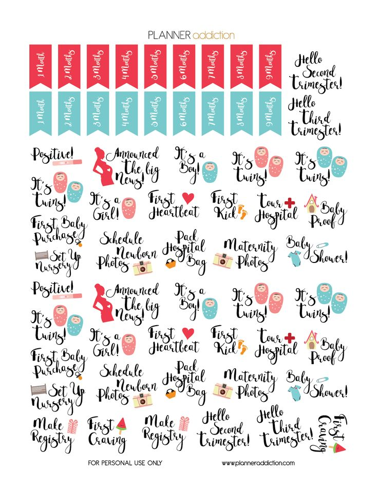 1000+ Ideas About Pregnancy Calendar On Pinterest