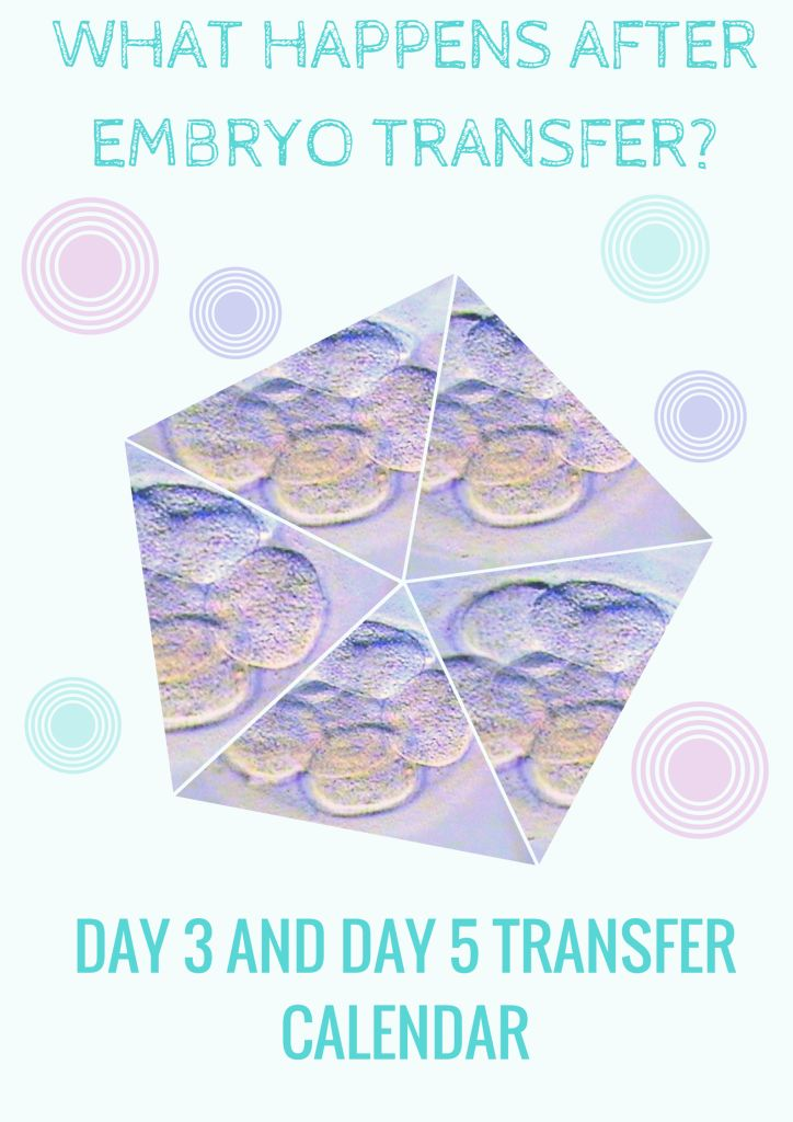 1000+ Ideas About Frozen Embryo Transfer On Pinterest