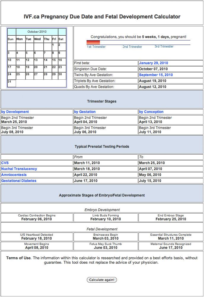 Due Date And Fetal Development Calendar