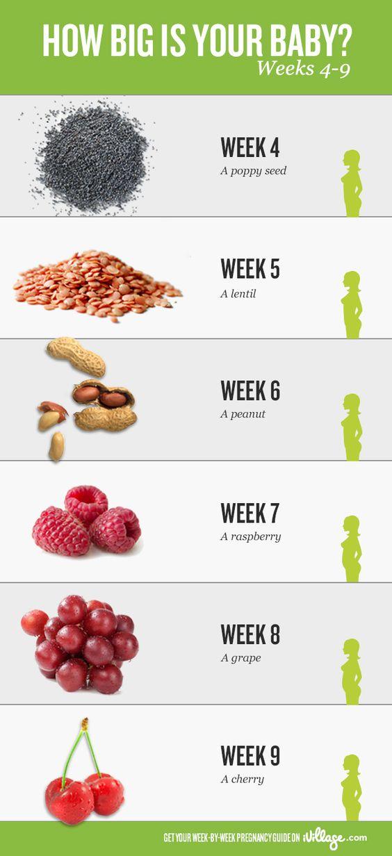 Baby Calendar By Week