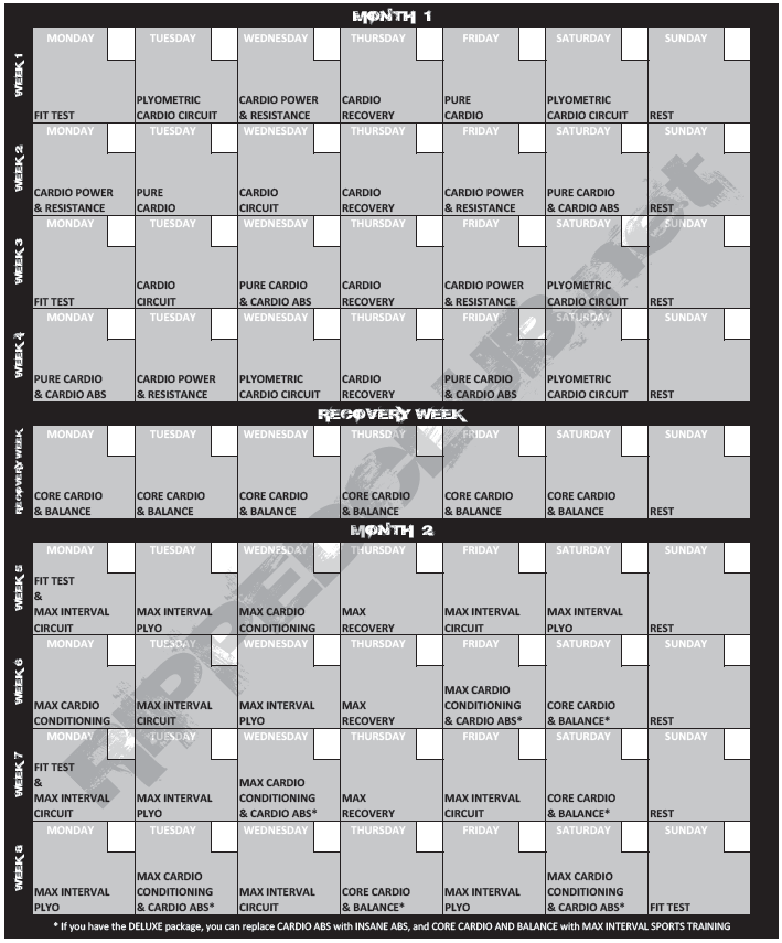 Wall Calendar Insanity Workout