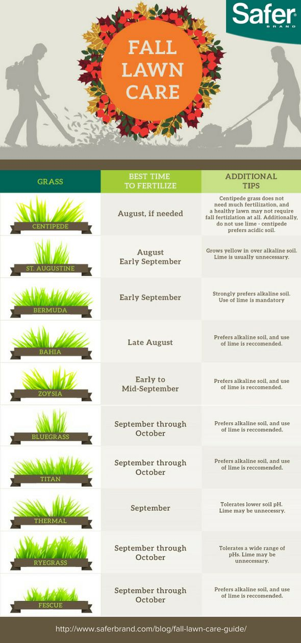 1000+ Ideas About Lawn Care On Pinterest