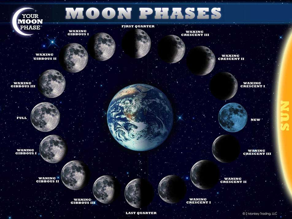 1000+ Images About Moon Project On Pinterest