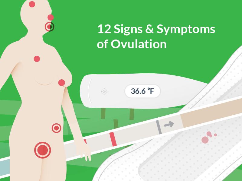 12 Ovulation Symptoms & Signs