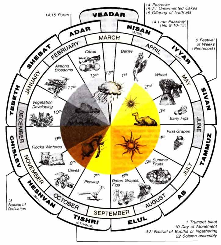 Biblical Chronology Ii