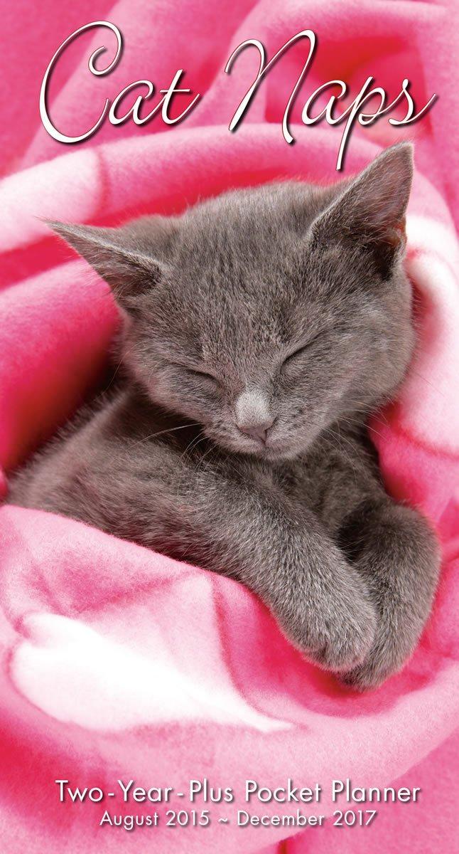 Cat Naps 2016 Checkbook 2 Year Pocket Planner Calendar