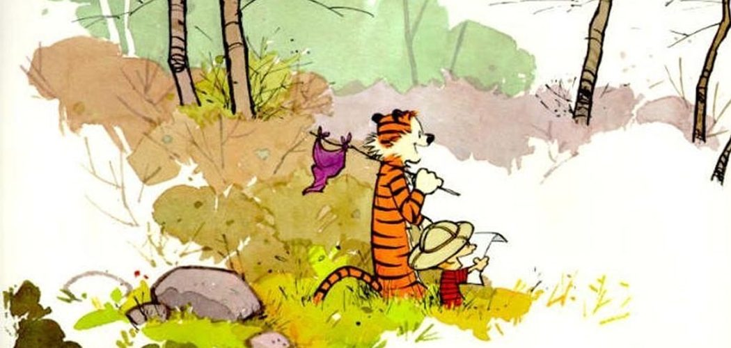 Calvin & Hobbes – Art Before Commerce