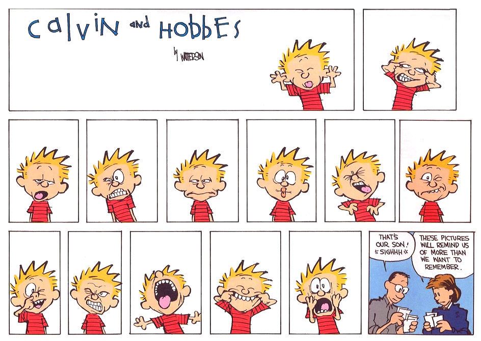 Calvin And Hobbes 2015 Calendar