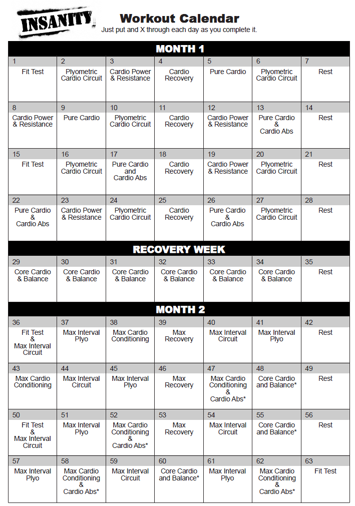 Shaun T Insanity Workout Schedule Pdf Eoua Blog
