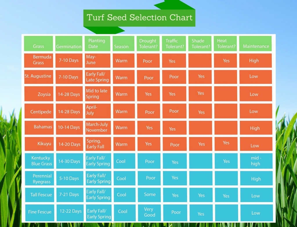 7 Lawn Care Tips Guaranteed To Help You Grow A Healthier Lawn Scotts Lawn Maintenance Calendar