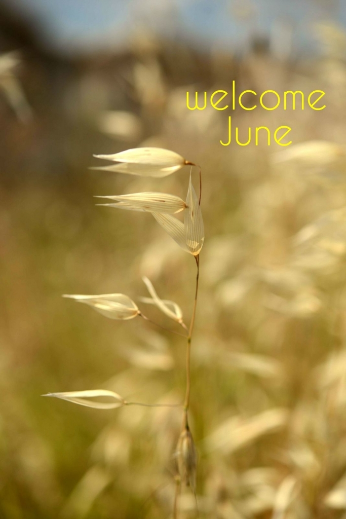 Welcome June Summer Pinterest June Birthday Messages And Messages  Welcome June Month Quotes Images