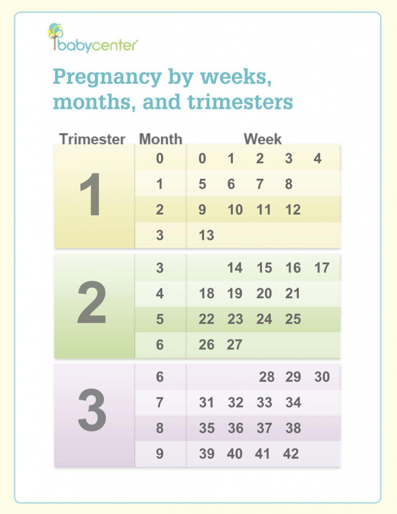 pin on ba boy pregnancy trimesters weeks chart