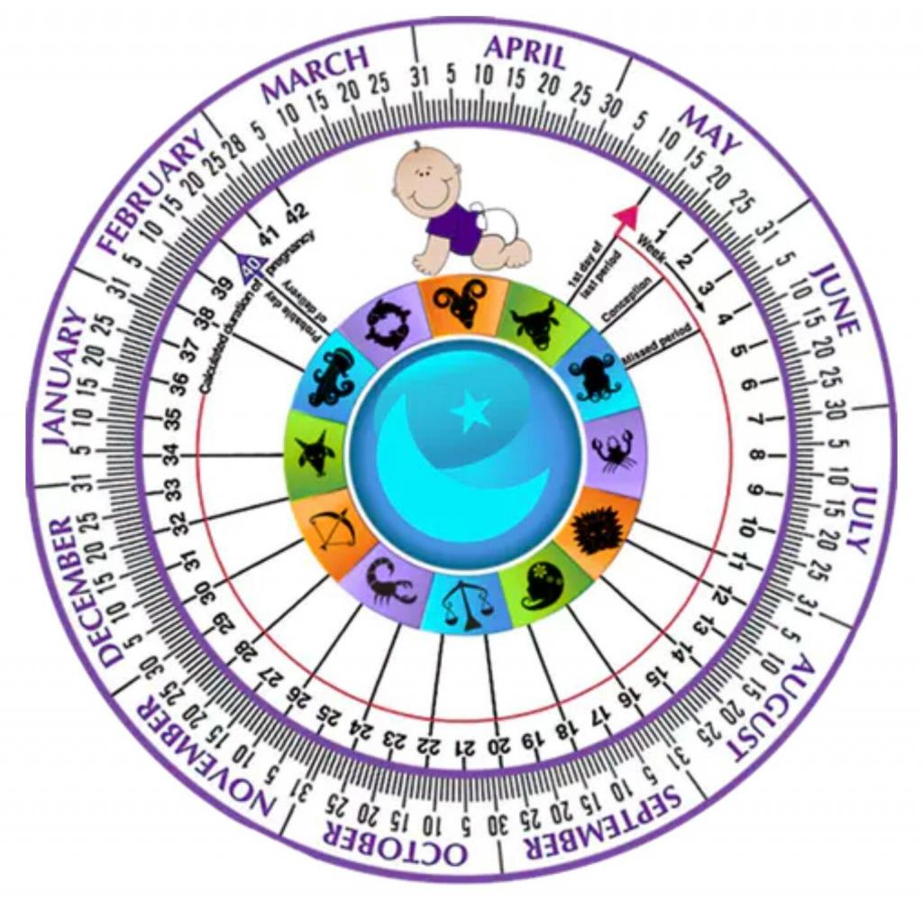 pin on maternity ba ideas ivf calendar due date