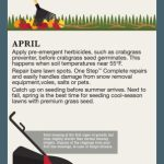Lawn Care Calendar For Cool Season Lawns Infographic Lawn Treatment Calendar