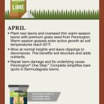 Lawn Care Calendar For Warm Season Lawns Infographic Care Lawn Treatment Calendar