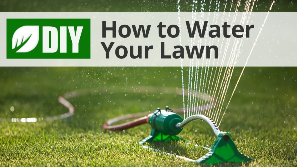diy lawn care calendar maintenance schedule for cool simple printable schedule for lawn care in nebraska