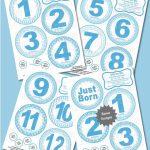 Monthly Milestone Ba Stickers Little Boy Blue Instant Download Diy Printable Bonus Just Born 1 3 Weeks And Calendar Stickers Ldd 041 Printable Baby First Year Calendar