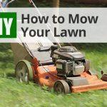 Diy Lawn Care Calendar Maintenance Schedule For Cool Lawn Treatment Calendar New York 1