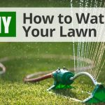 Diy Lawn Care Calendar Maintenance Schedule For Cool Lawn Treatment Calendar New York