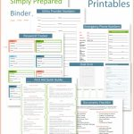 Fantastic Emergency Binder Printables With Very Complete 5 Year Daily Calendar 2020 2023 For Lawyers Printable