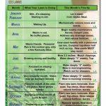 Lawn Care Calendar Wwwlushecolawns Lawn Care Fall Free Printable Lawn Treatment Calendar
