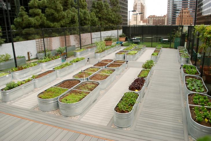 20 Raised Bed Garden Ideas Design Trends Premium Psd