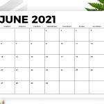 8 5 X 11 Inch Bold 2021 Calendar