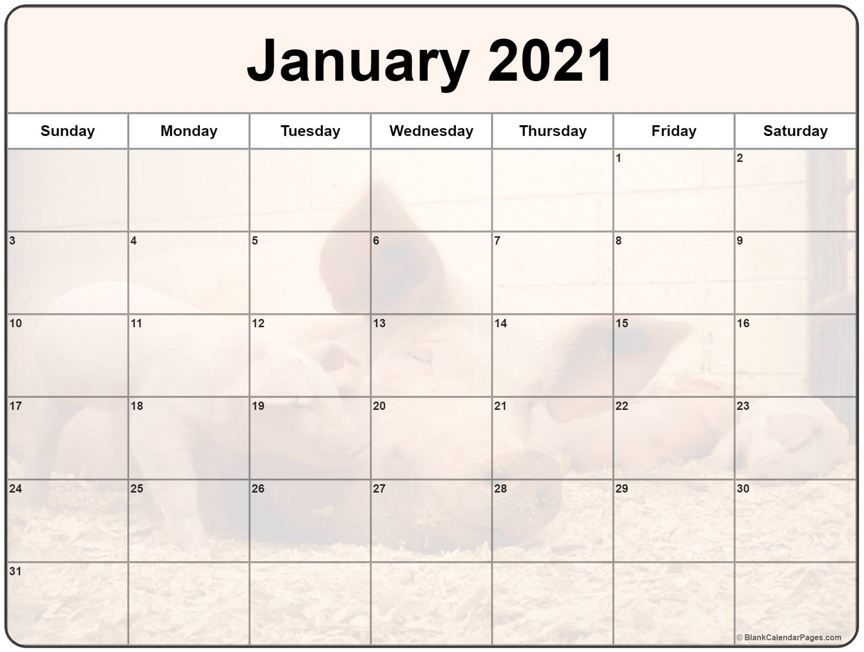 Collection Of January 2021 Photo Calendars With Image Filters 3