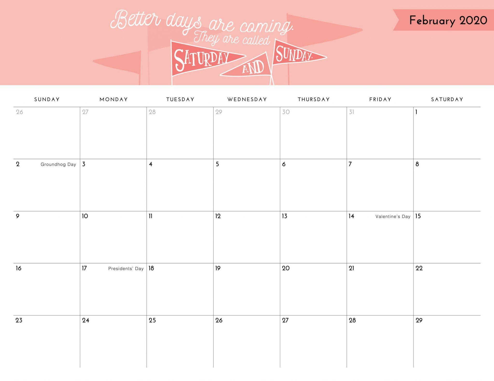 Cute February 2020 Calendar Template In 2020 2020