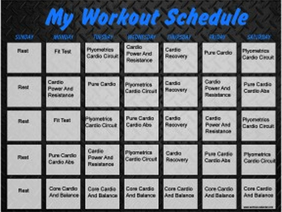 Download Insanity Workout Schedule Printable Pdf