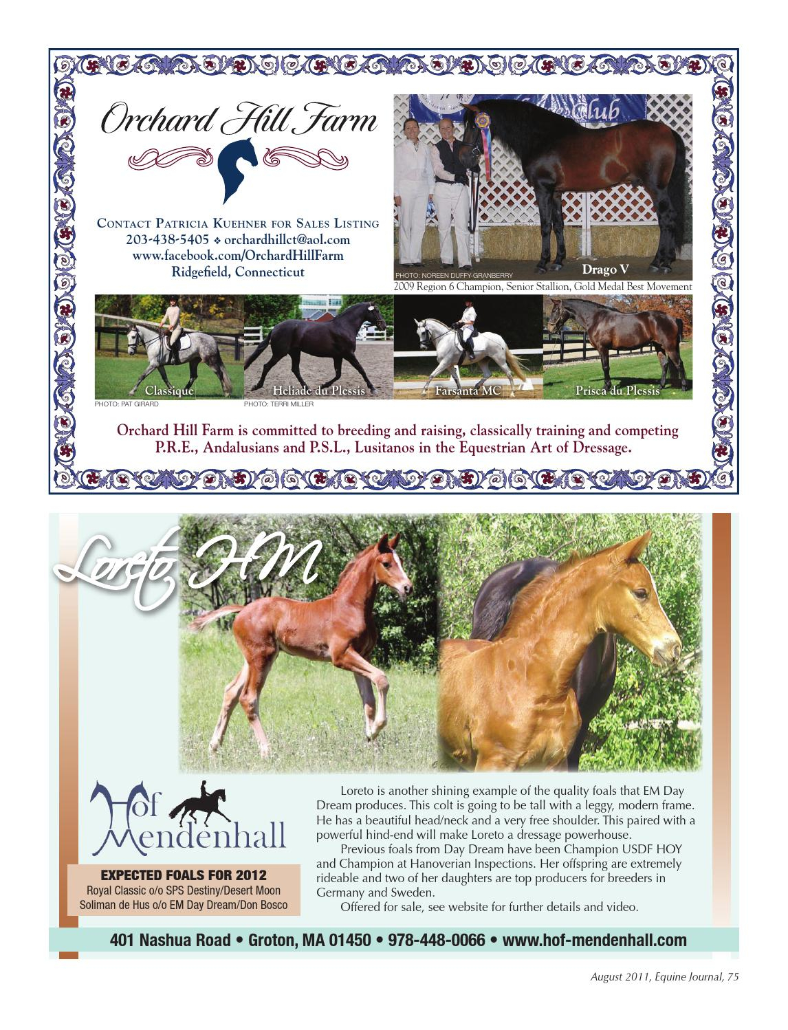 Equine Journal August 2011equine Journal Issuu