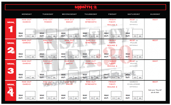 Here Is A Free Printable Insanitymax30 Month 2 Workout