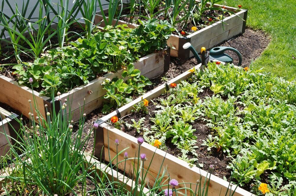 Landscaping Gardens Rocky Soil Nixa Lawn Service