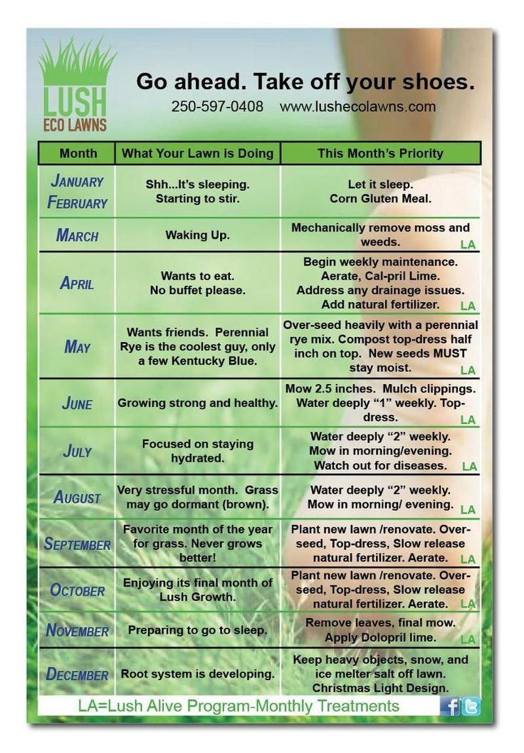 Lawn Care Calendar Www Lushecolawns