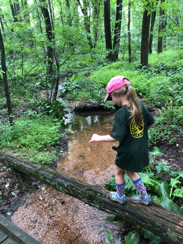 Nature Pre K September 2020 To May 2021 Registration Fee