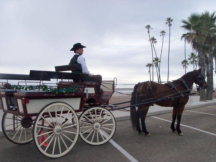 Oceanside Valentines Week Horse Carriage Rides San