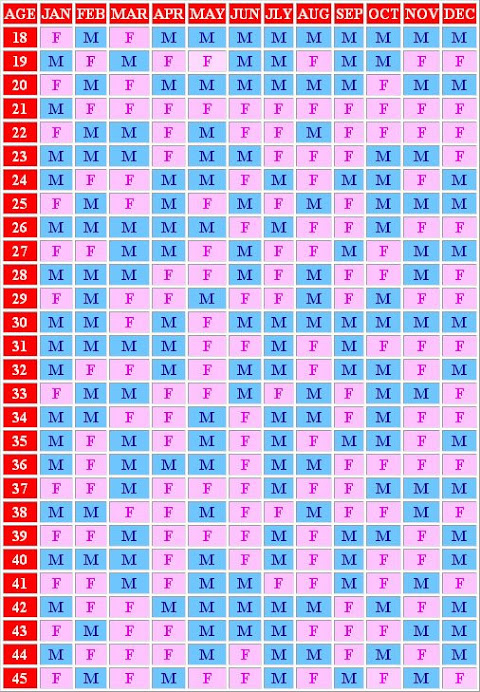 Our Family Ancient Chinese Birth Chart