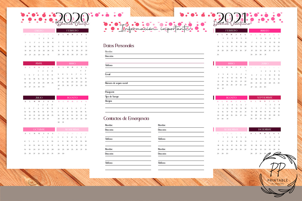 Printable Planner 2020 2021 12 Months Graphic