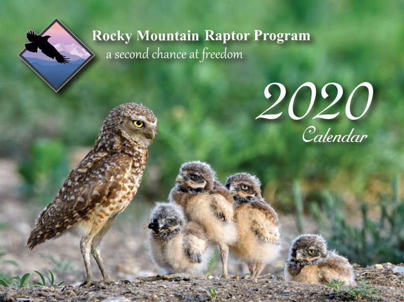 Rmrp 2021 Photo Calendar Contest Submissions Are Open