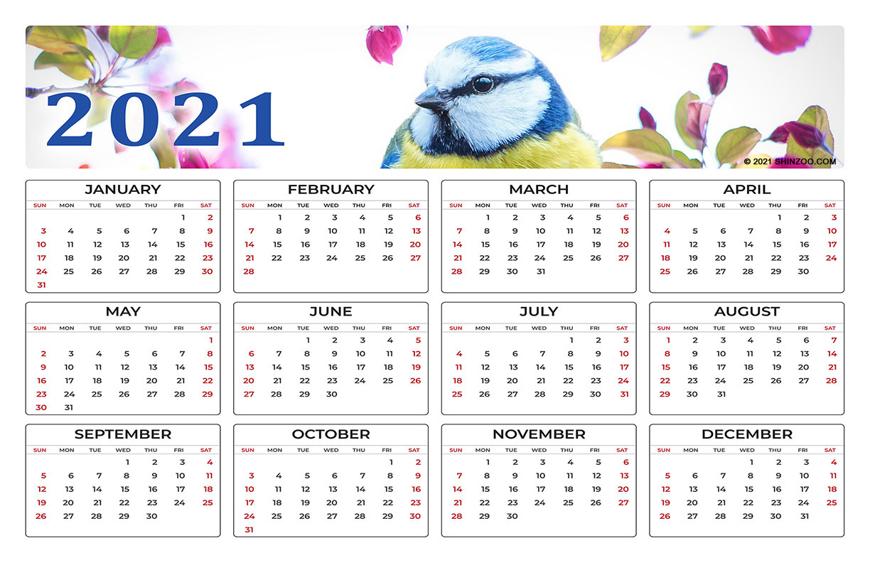 Beautiful Spring Bird On A Branch 2021 Calendar 11x17 1