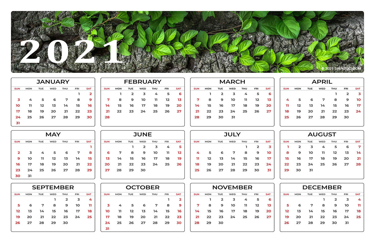 Wild Green Leaves On A Tree Branch 2021 Calendar 11x17 1