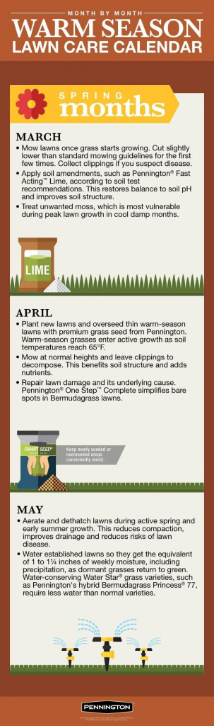 12 Month Lawn Care Schedule Calendar Template 2020
