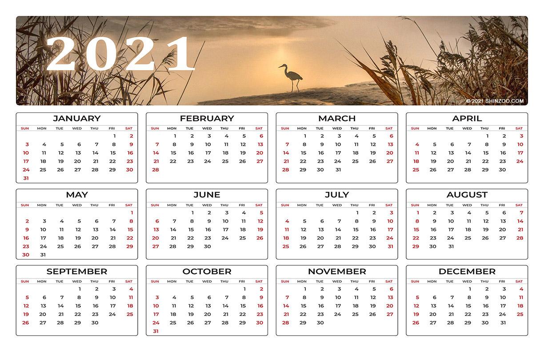 Heron Bird Fishing 2021 Calendar 11x17 Printable Template