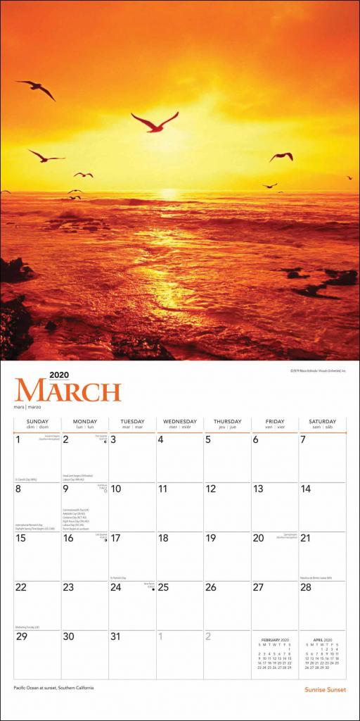 2020 Sunrise Sunset Monthly Calendar Calendar Template 2021 1