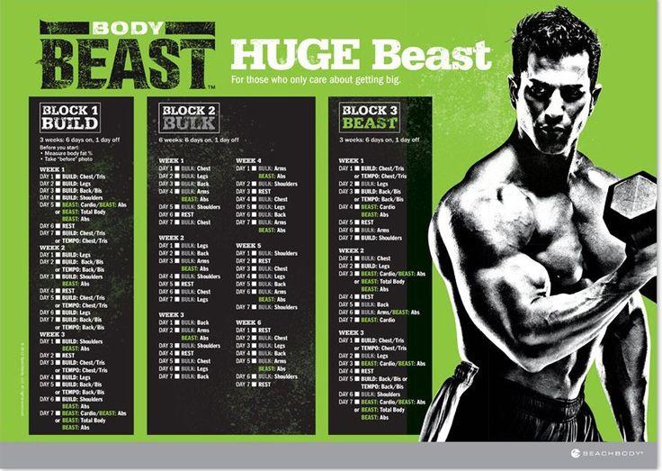 Body Beast Workout Schedule Downloads Get Them Hack