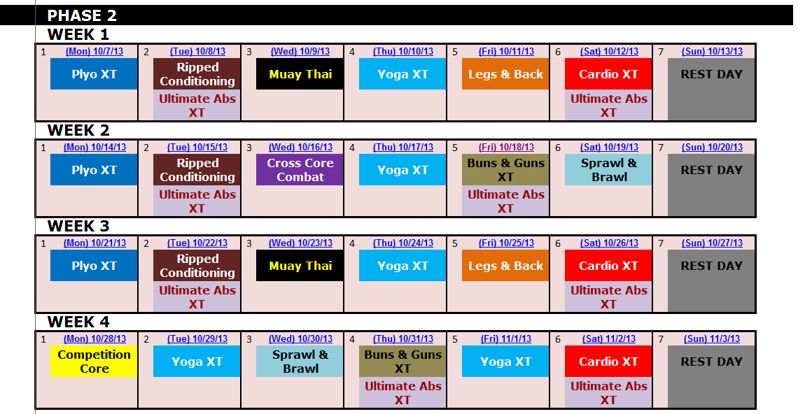 Excel Spreadsheet Workout Calendar Exercise Tracker Tool For Tapout Xt