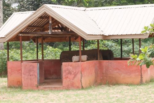 Photo Gallery Uhuri 4