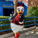 Photos Video Daisy Duck Dressed As Black Widow Now